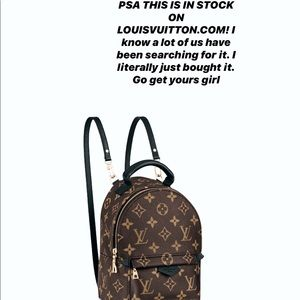 Palm Springs mini backpack Louis Vuitton